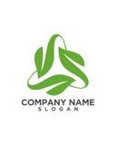 三角叶子绿色业务保险摘要 库存照片