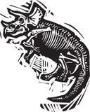 三角恐龙化石 免版税库存图片