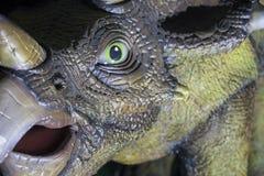 三角恐龙恐龙现实模型  免版税图库摄影