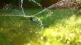 三通的喷水隆头在庭院里 库存图片