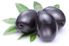 三颗大成熟黑橄榄。 免版税图库摄影
