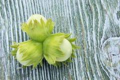 三颗绿色狂放的榛子 免版税库存照片
