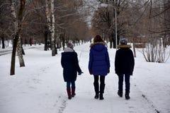 三年轻人是谈话和走在一条公园道路在冬天在莫斯科 库存照片