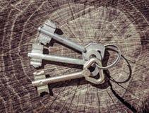 三从谷仓锁的古板的钥匙 库存照片