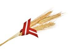 三黑麦耳朵和拉脱维亚的旗子丝带 库存图片