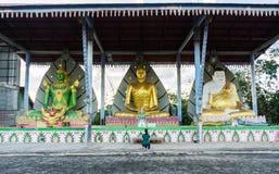 三bubha大雕象  库存图片