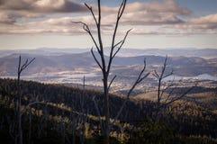 从登上俯视霍巴特,塔斯马尼亚岛,澳大利亚的惠灵顿的看法 免版税库存图片