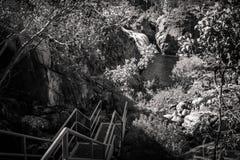 上升下来对伊迪丝在黑白,澳大利亚下跌 库存照片