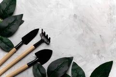 上升了叶子和园艺工具框架,春天从事园艺的概念 库存照片