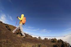 上升到山峰的妇女背包徒步旅行者 免版税图库摄影