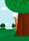 上升到树的灰鼠 免版税图库摄影