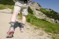 上升在一座山在提洛尔奥地利 免版税库存照片