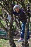 上升在一棵树的滑稽的嬉戏的小女孩在公园 户外子项 假期在夏天 免版税库存照片