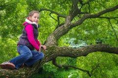 上升在一棵树的滑稽的嬉戏的小女孩在公园 户外子项 假期在夏天 免版税图库摄影
