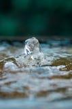上升在喷泉的水 免版税图库摄影
