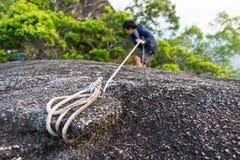 上升在岩石的人 免版税库存图片