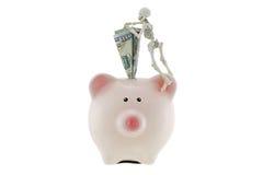 上升在有美国美元金钱的桃红色存钱罐的骨骼 免版税库存图片