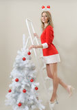 上升在梯子的愉快的女孩装饰圣诞树 免版税库存照片