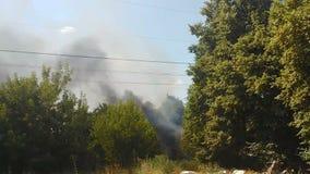 上升在绿色森林,野火威胁上的浓烟在热的夏天,放火 股票视频