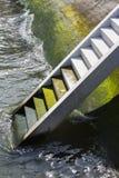 上升在水外面的台阶 库存照片