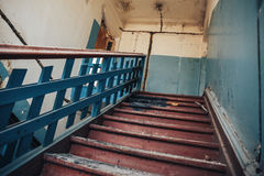 上升木的台阶  免版税库存图片