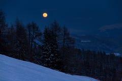 上升的月亮 库存照片