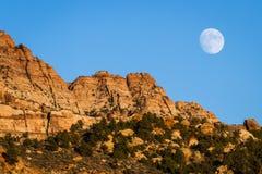 上升的月亮 免版税库存图片