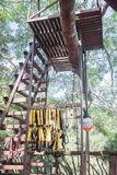 上升的树的安全设备 免版税库存照片