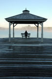 上升的湖薄雾上升星期日注意的妇女 免版税库存图片