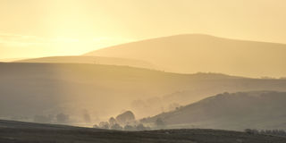 上升的薄雾, Bowland森林  库存照片