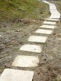 上升通过一个泥泞的公园的石道路足迹 免版税图库摄影