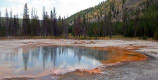 上升鲜绿色在黑沙子喷泉水池的水池温泉的热的蒸汽在黄石国家公园在怀俄明美国 免版税图库摄影