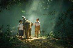 上有大象的学 库存照片