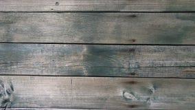 上木头 库存照片