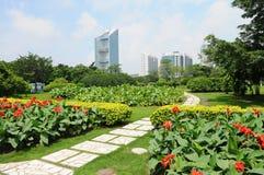 上海市公园在夏天。 免版税图库摄影