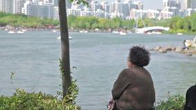上海市公园 股票视频