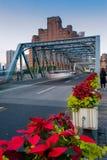 上海障壁 免版税库存图片