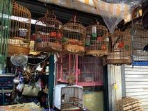 上海鸟商店 免版税库存照片