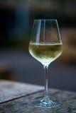 上色变冷的白葡萄酒的图象在一块玻璃的,与拷贝空间 免版税库存照片