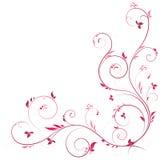 上色壁角花卉粉红色 免版税图库摄影