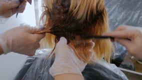 上色妇女客户的头发的两位专业美发师在演播室 股票视频