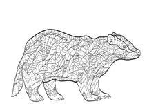 上色成人的传染媒介欧洲獾 免版税图库摄影