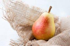 上色新鲜的梨温暖 免版税库存照片