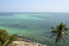 上色海洋 免版税库存图片
