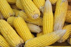上色甜玉米黄色泰国 免版税库存照片