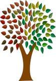 上色结构树 免版税库存照片
