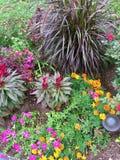上色花园被团结 免版税库存照片