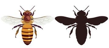 上色蜂和它黑暗的剪影的图象 也corel凹道例证向量 库存图片