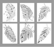 上色页的禅宗缠结风格化各种各样的羽毛 向量例证