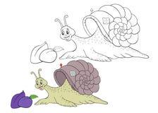上色页蜗牛的孩子 图库摄影